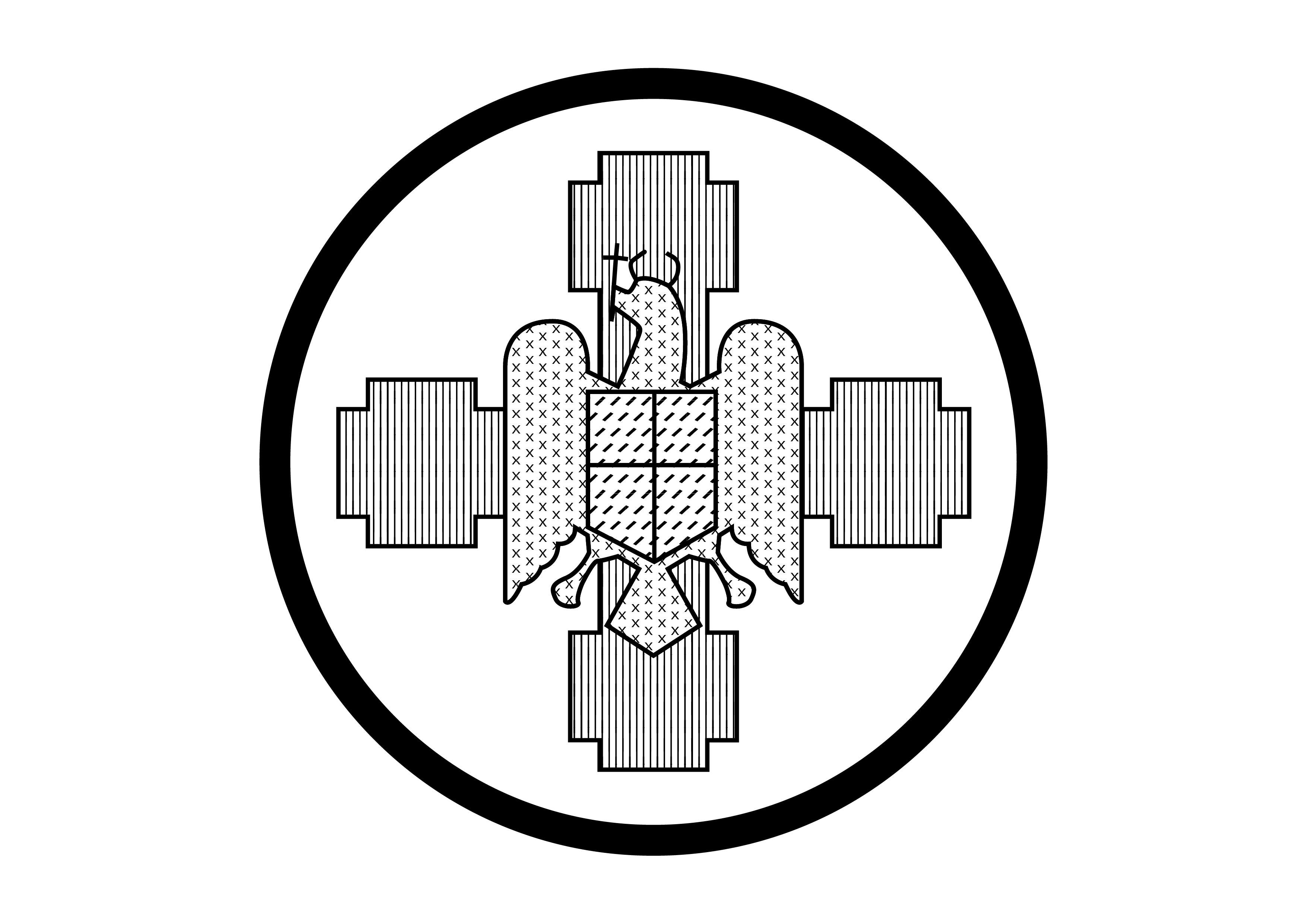 FRN Straja – Cercetașii